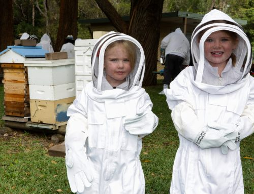 Illawarra Beekeepers Open Day 2017