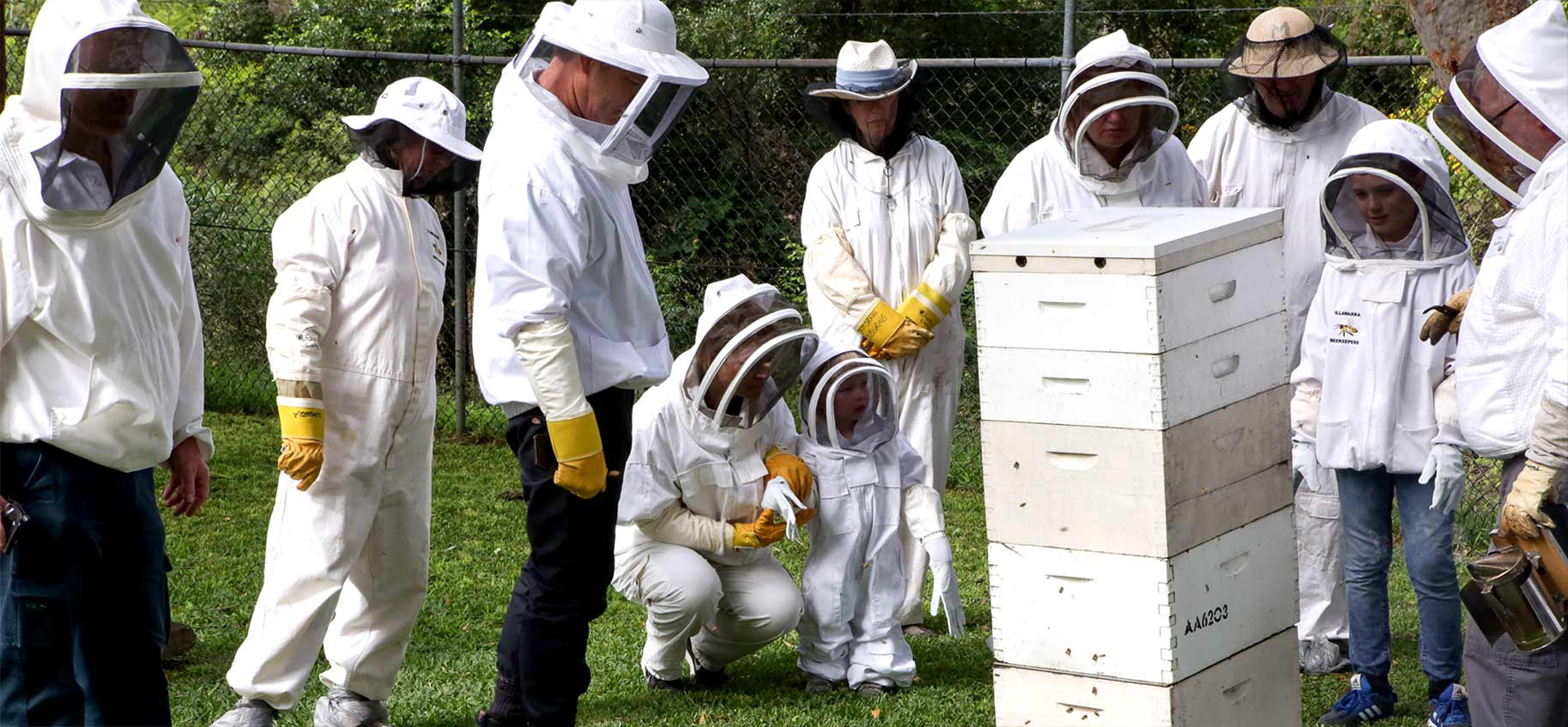 open-day-2018-illawarra-beekeepers-wide
