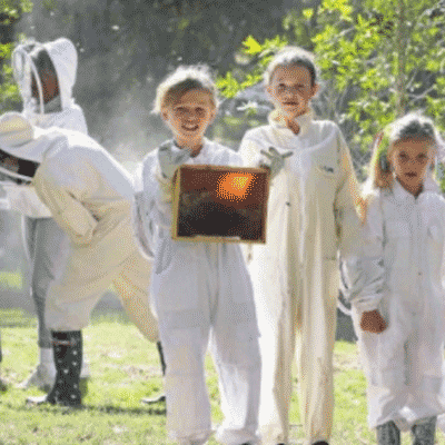 St-George-and-Sutherland-Shire-Leader-news-illawarra-beekeepers-open-day-2018-beekeeping-kids