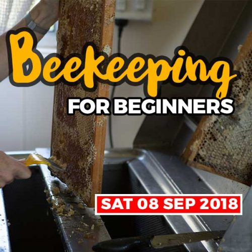 20180908-beekeeping-courses-shop-item