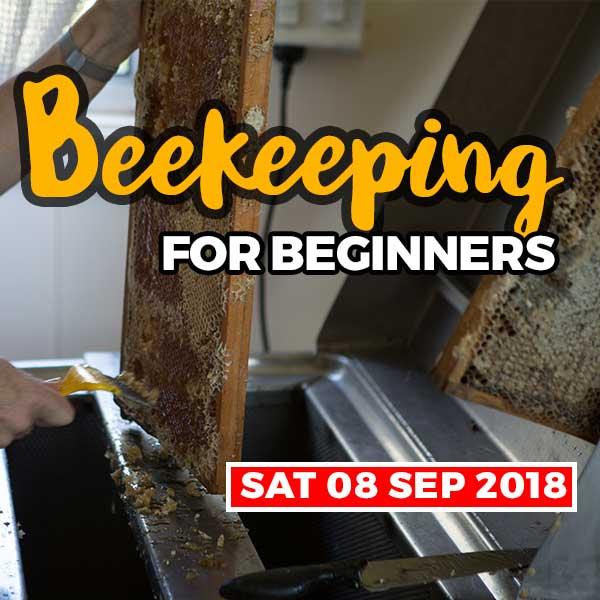 20180908-beekeeping-courses-shop-item