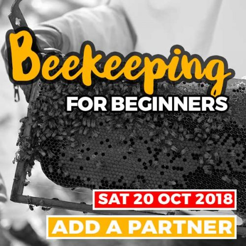 20181020 beekeeping courses partner shop item