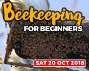 20181020 beekeeping courses shop item