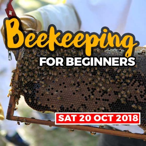 20181020 beekeeping courses shop item