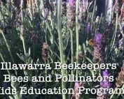 flow-funding-kids-education-program