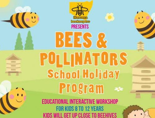 Bees & Pollinators School Holiday Program Oct 2018