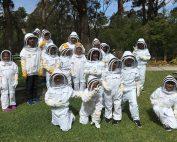 Bees & Pollinators School Holiday Program