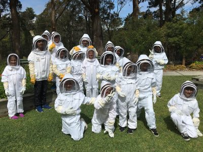 Bees & Pollinators School Holiday Program