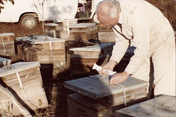 dennis-coates-inspecting-beehives