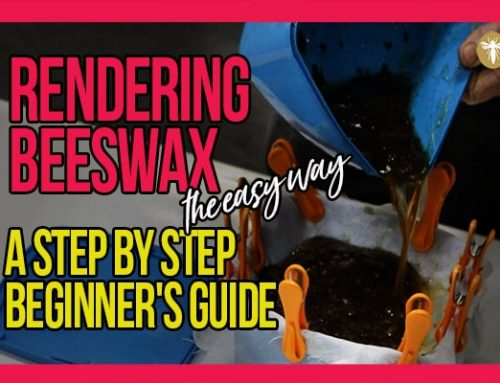 Rendering Beeswax [the easy way] with Bruce White