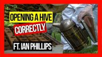 ABA-of-NSW-Field-Day-2019-Part-08-Opening-a Hive-Correctly-ft-Ian-Phillips-web-thumbnail