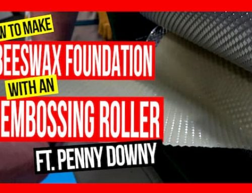 How to Make Beeswax Foundation Sheets ft. Penny Downy