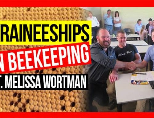 Traineeships in Beekeeping | ABA of NSW Field Day 2019 Video